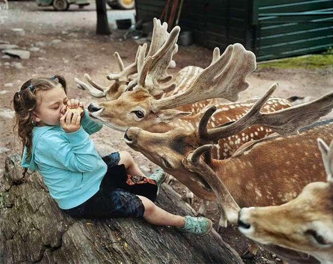 fotos_criança_amor_animais_tramp (11)