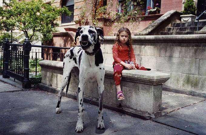 fotos_criança_amor_animais_tramp (16)
