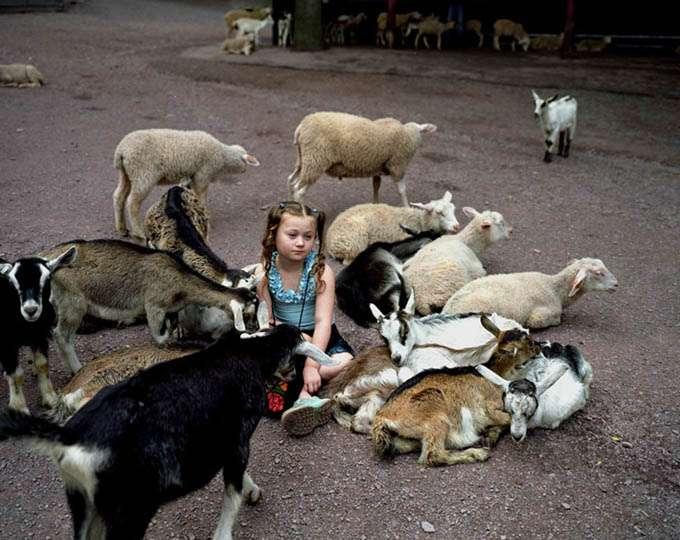 fotos_criança_amor_animais_tramp (24)