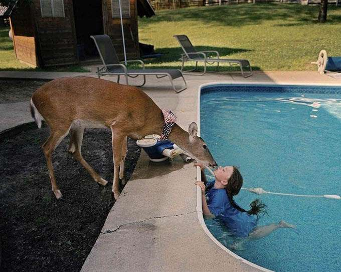 fotos_criança_amor_animais_tramp (26)