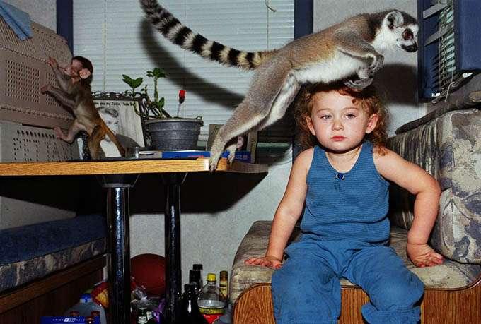 fotos_criança_amor_animais_tramp (3)