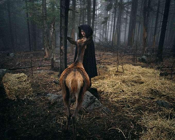 fotos_criança_amor_animais_tramp (8)
