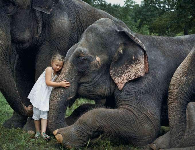 fotos_criança_amor_animais_tramp (9)