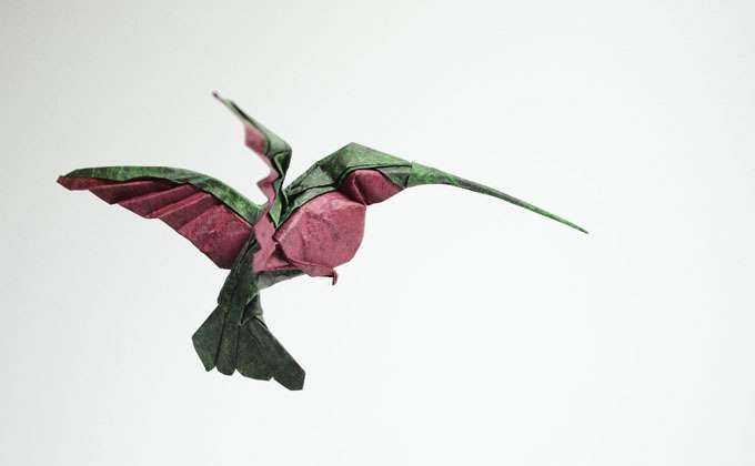 origami_animais_hoàng_ tiến_ quyết_tramp  (2)
